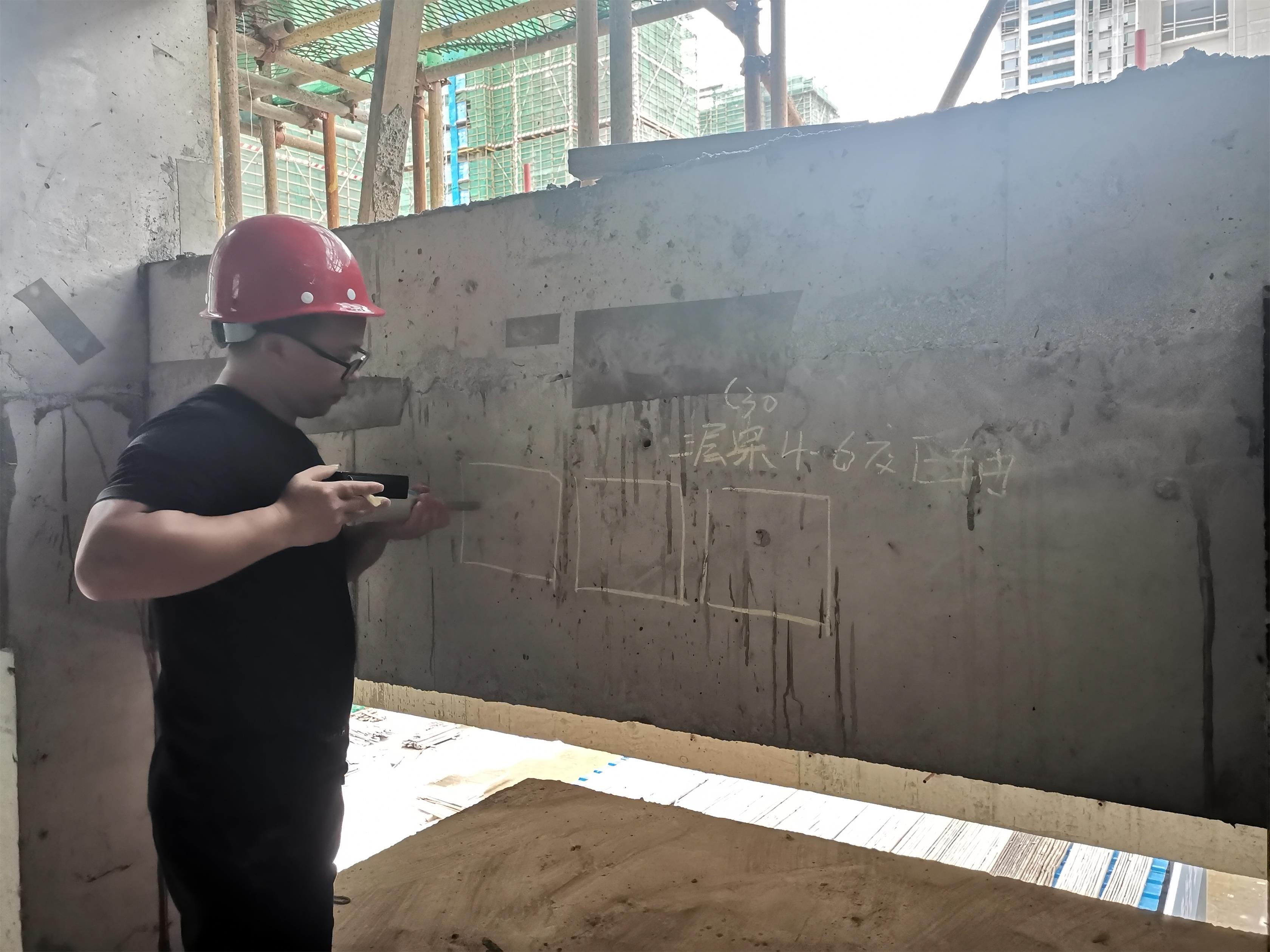 碧桂园·西南上城一期映山府项目